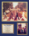 Beatles Abbey Road Bio Art