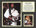 Chuck Berry Bio Art