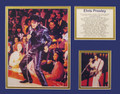 Elvis In Concert Bio Art