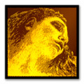 Pirastro Evah Pirazzi Gold Stainless Steel Violin String E loop