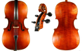 Scott Cao Model 600 Cello