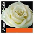 Wondertone Solo Violin String Set w/ Silver E and Steel A