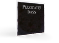 Pizzicato Bass A String - Gut/Silver