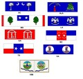 CW-25 Confederate Infantry (State Flags)
