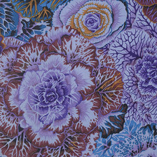 Brassica Philip Jacobs Colour: dark