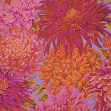 Philip Jacobs Japanese Chrysanthemum Pink