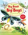 USBORNE - BIG BOOK OF BUGS