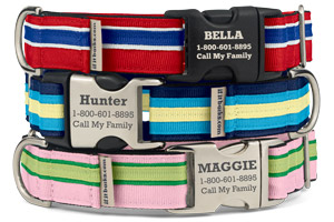 Original Stripe Martingale Collars