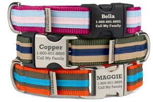 Stripe Martingale Collars - Standard