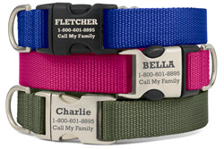 Personalized Original Stripe Dog Collars