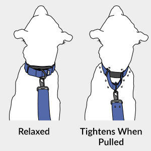 How a Martingale Collar Works