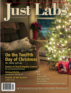 justlabs-winter2015.png