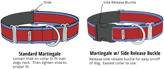 Type of Martingale Collars