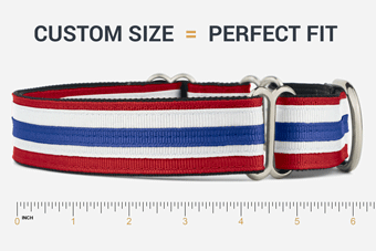 The Perfect Fitting Dog Collar