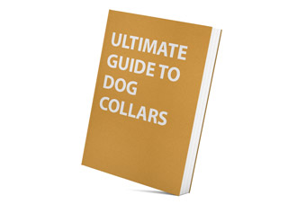 Ultimate Guide to Dog Collars