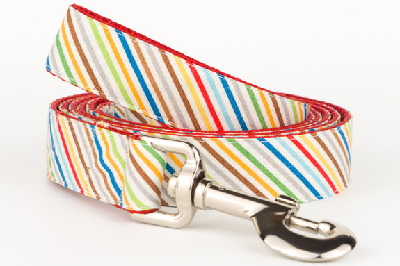 Rover Stripe Dog Leash