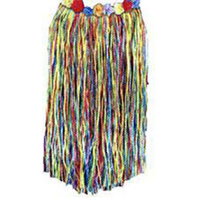 Grass Skirt Multi Colored Child