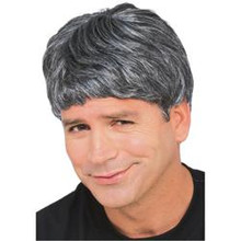 WIG CHARACTER MEN'S-GREY