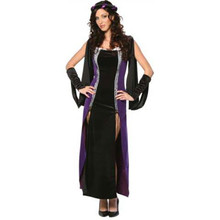 Medieval Lady Of Shallot Costume Adult *Clearance*