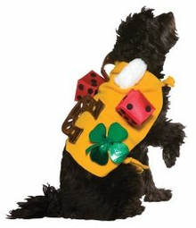 Pet Costume Lucky Dog