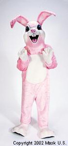 PINK RABBIT MASCOT PURCHASE