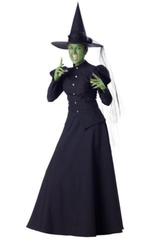 WICKED WITCH COSTUME ADULT
