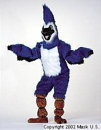 Blue Jay Mascot Costume (Rental)
