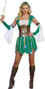 Elf Warrior Costume Adult