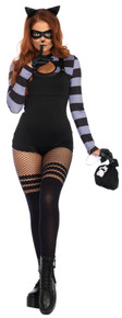 Cat Burglar Sexy Adult Costume