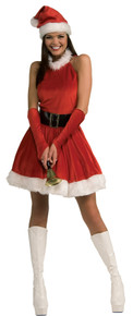 Women's Santa's Inspiration Costume
