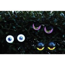 Peeping Peepers