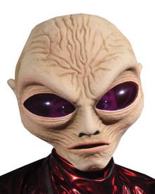 Gray Alien Mask