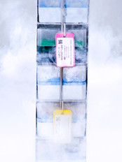 Our cryogenic kit can withstand long-term storage in liquid nitrogen or ultra-low temperature freezers.
