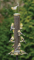 Aspects Large Thistle Antique Brass Quick Clean Bird Feeder
