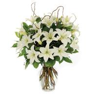 Loving Lilies