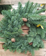 "16"" Noble Fir Wreath"