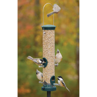 Aspects Medium Spruce Green Quick Clean Bird Feeder
