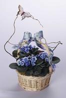 A Basket of Violets