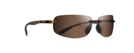 Newport Gloss Tortoise with Brown Polarized Lenses