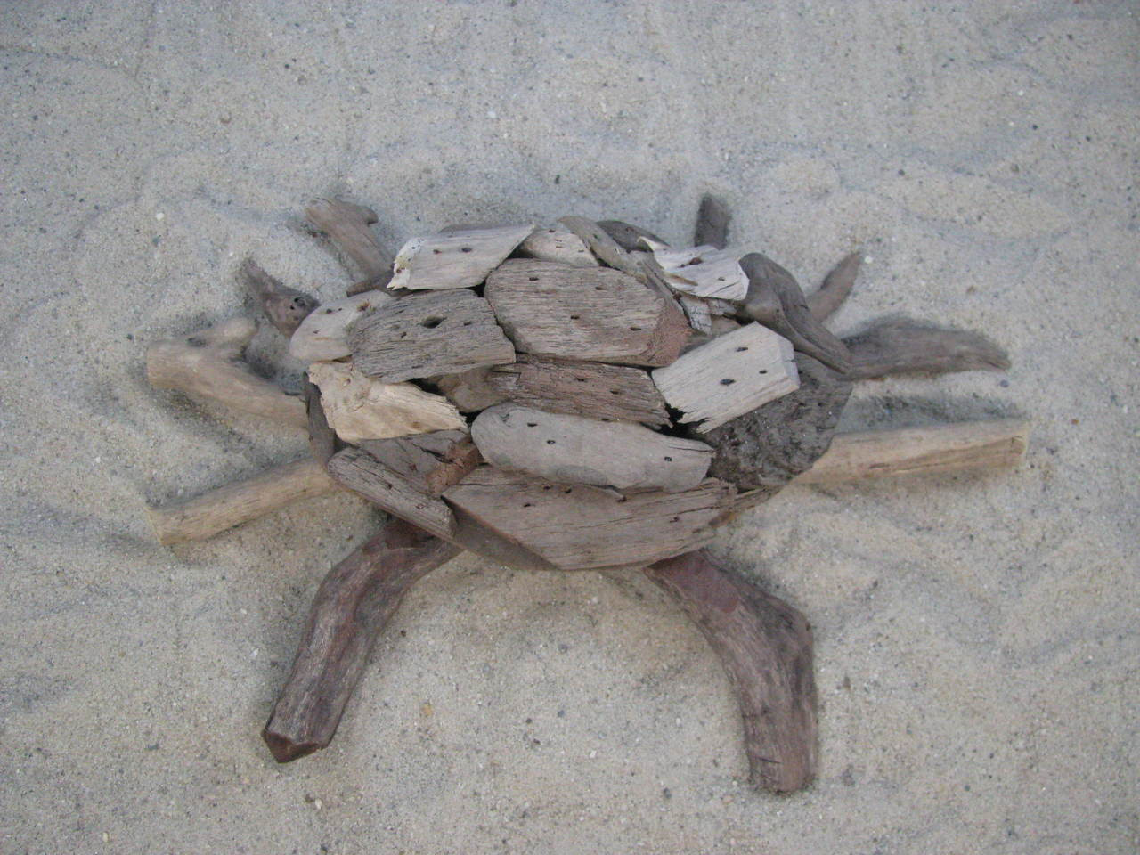Driftwood Crab Small Tabletop Coastal Beach Outer Banks Decor OBX Weathered Natural Ghost Crab Blue Crab Dungeness Crab