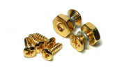 Pickguard Bracket Screws & Nut Set of 2 Gold for Gibson® Les Paul