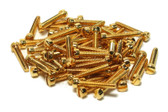 Humbucker P90 Fillister Pole Screws Gold plated 60 pieces