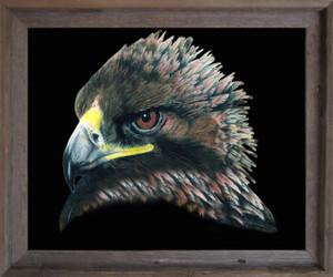 American Bald Eagle Bird Picture Wall Decor  Barnwood Framed Art Print Poster (19x23)