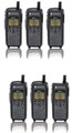 The 6 Pack of DTR-410 radios is a great way to get your employee's conected.  The Rugged, compact polycarbonate housing offers comfort, with rubber overmold.  The durable design meets military 810 C, D, E, and F specifications for shock, vibration, water, dust and temperature extremes.