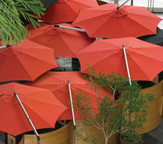 "Shademaker Orion 13' 1"" Octagonal Cantilever Umbrella"