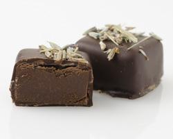 chocolatt-31.jpg