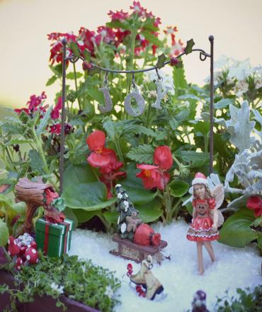 christmas-fairy-garden-fairytale-gardens-garden-blog.jpg