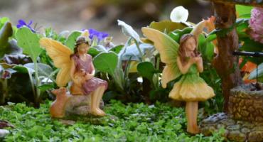 editors-pick-garden-fairies.jpg