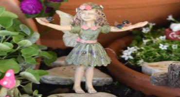 fairy-fav.jpg