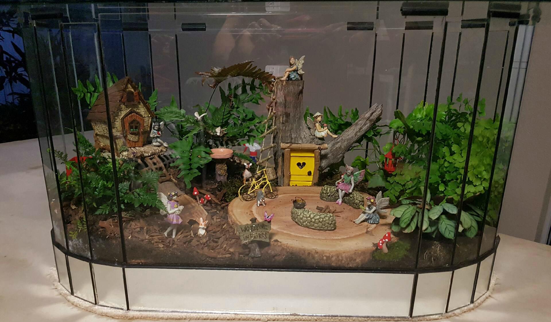 how to build a bog garden terrerium